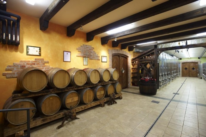In the new Prus cellar